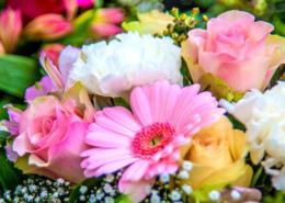 flower-centre-durban